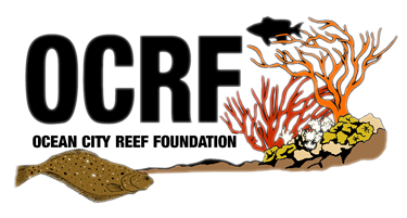 Ocean City Reef Foundation